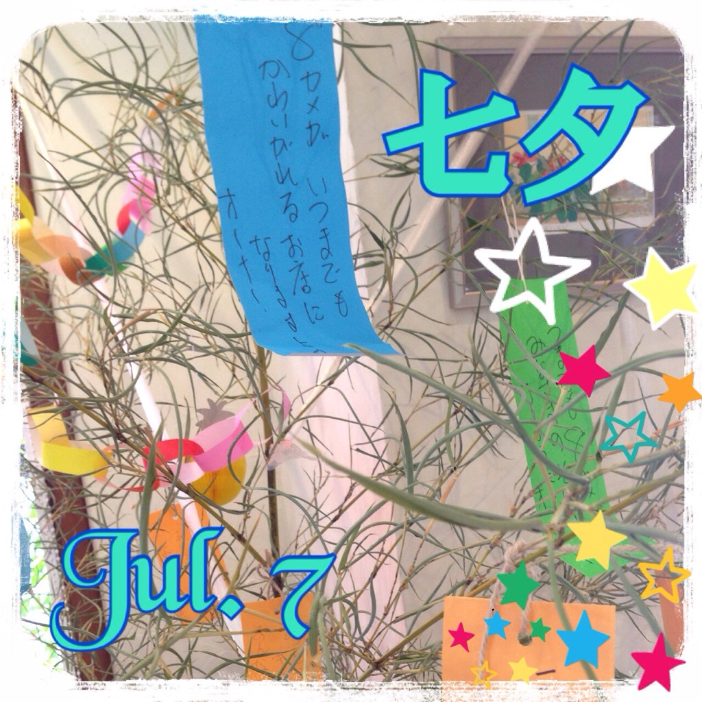 Aiの日記(^^) 『七夕』